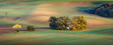 Panorama of beautiful colorful autumn landscape with small chappel in curved fields in south moravia