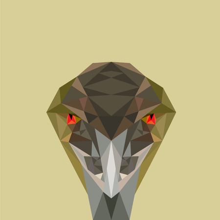 hostility: Low poly vector illustration of angry bird, Emu. Concept of angry, hostility or watchful. Illustration
