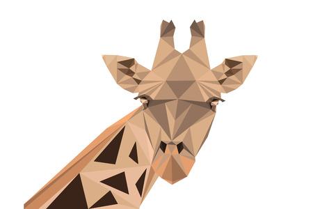 giraffe: Ilustraci�n vectorial poligonal abstracta. Retrato de jirafa. Vectores