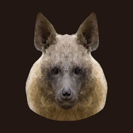 canine: Canine beast of pray, hyena, low poly vector portrait illustration.