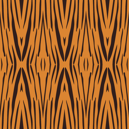 tiger stripe: Vector illustration of tiger stripe pattern. Beautiful pattern made by the Mother Nature.