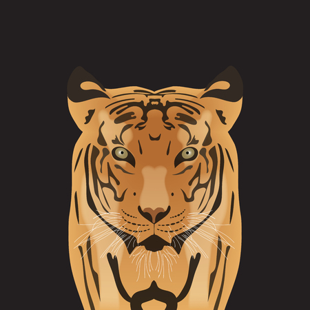 penetrating: Flat vector portrait of a tiger. Beautiful face of a big cat with penetrating eyes.