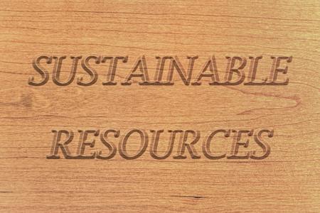 sustainable resources: Sustainable resources, wooden natural sign or emblem, background.