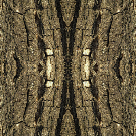 greenish: Old tree bark seamless texture, abstract pattern or background illustration. in greenish tone. Natural theme.