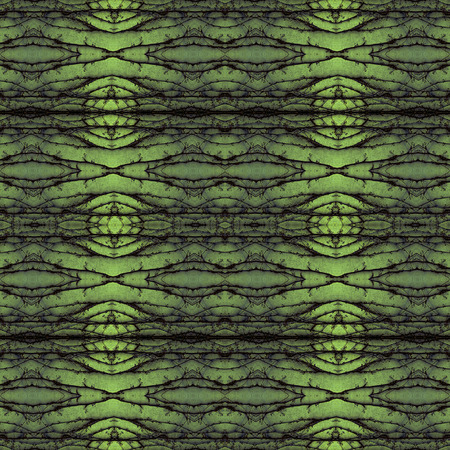 climbing plant: Kaleidoscope abstract background. Seamless pattern. Based on climbing plant on a concrete wall. Stock Photo