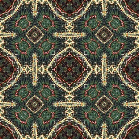 wasteland: Seamless wallpaper tiles or pattern based on picture of cactus with big prickles Stock Photo