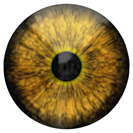 digital eye: Eye, abstract digital illustration