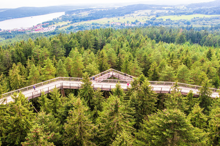 Lipno, Czech Republic - August 8, 2016: Treetop walkway in Lipno, 200km south of Prague, famous touristic place and unique construction in the Czech Republic.