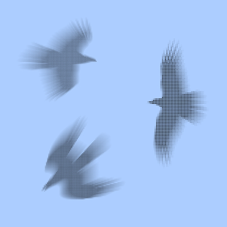 Birds, eagles vector eps 10 illustration. Simply made of black and grey dots. Concept of fast and free movement.