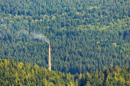 Smoking chimney in deep forest, ecology concept.