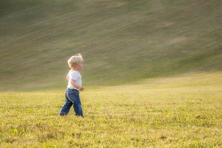 Child, baby girl, toddler, walking alone on a large meadow in late summer sun, end of August.