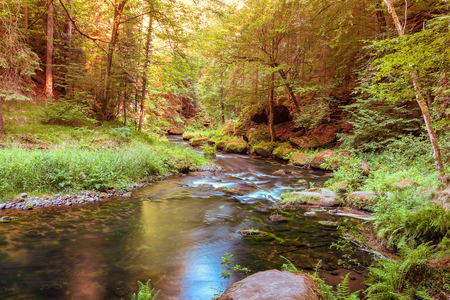 Peaceful scene of a small river or a brook flowing through woods in romantic valley in summer, pure untouched nature, long exposure.