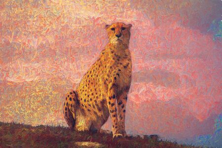 Cheetah sitting Stock fotó