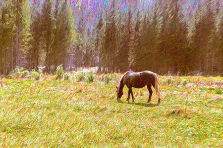 Free horse on a mountain meadow artwork painting, wildlife concept