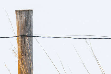 wire fence: Rustic wooden country fence with snow background Stock Photo