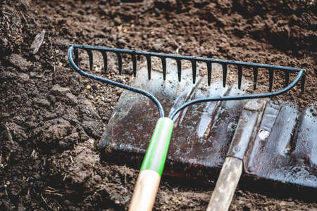 dirt pile: Close-up view of vintage gardening tools on rich, dirt pile, shallow DOF Stock Photo