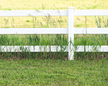 picket green: Close-up view of rural white fence in the countryside, shallow DOF