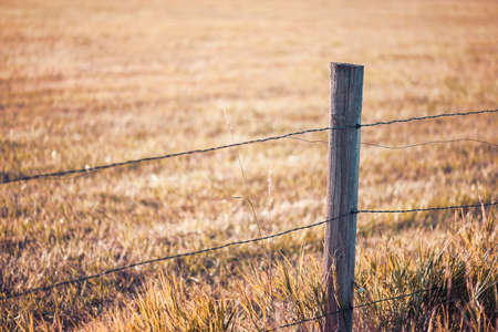 fencing wire: Close-up view of rustic, weathered farm fence post with autumn field background, shallow DOF