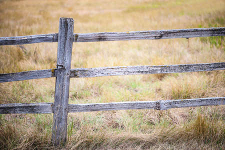 pasture fence: Close-up view of rustic, weathered farm fence post with autumn field background, shallow DOF