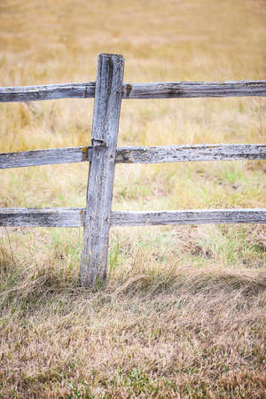fence post: Close-up view of rustic, weathered farm fence post with autumn field background, shallow DOF
