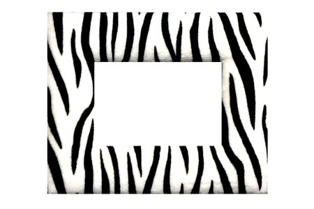 zebra frame photo