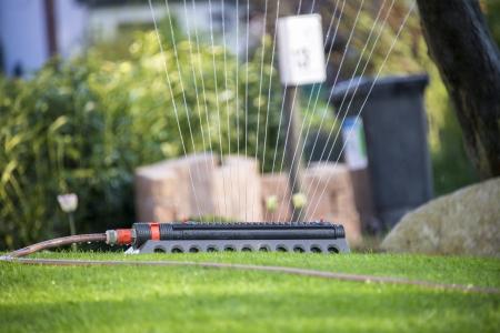 lawn sprinkler irrigates rural garden Banco de Imagens