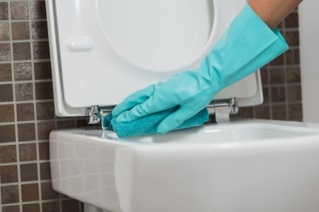 disinfect: Hand of a person cleaning the toilet seat in rubber gloves with a sponge disinfecting the underside for germs and bacteria while performing household chores