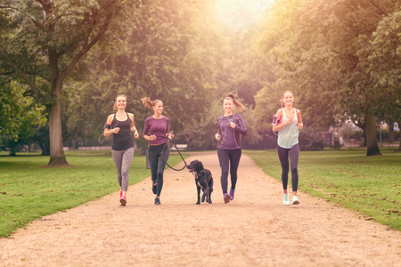 four friends: Four Healthy Young Women Jogging at the Park in the Afternoon with a Pet Dog.