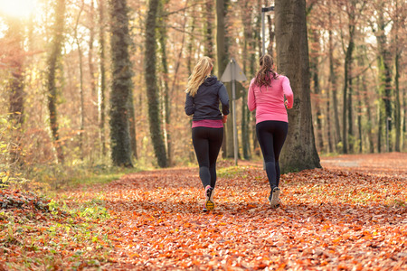 Rear view of two fit young woman jogging together through an autumn forest in a healthy active lifestyle concept