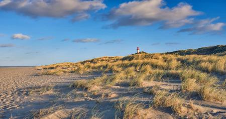 砂浜の軌跡を示す低角ビューで夕方の光の砂丘の後ろに灯台を持つさびれたビーチ 写真素材
