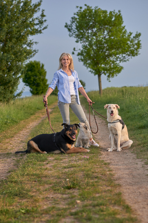 Attractive blond woman on a rural path with her three dogs on leads at sunset looking at the camera with a warm friendly smile