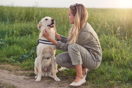 Happy smiling golden dog wearing a walking harness sitting facing its pretty young woman owner who is caressing it with a loving smile outdoors in countryside Banco de Imagens