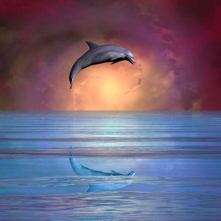 渦巻銀河に対する跳躍のイルカ