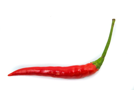 red chilli: red chilli isolated Stock Photo