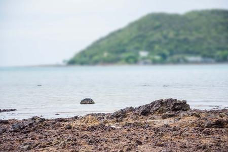 seascapes: seascapes rock blur background