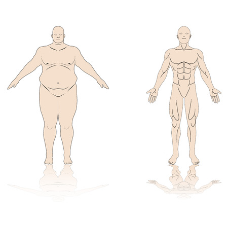 Anatomy Male Fat And Muscle Shadow Reflex Isolated Background ...