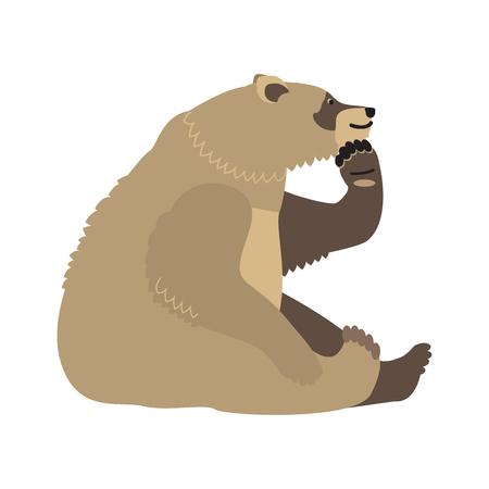 Bear thinking icon. Ilustração
