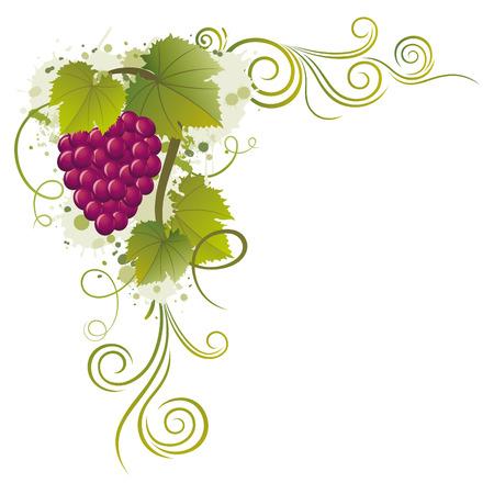 bordure vigne: fronti�res raisins  Illustration