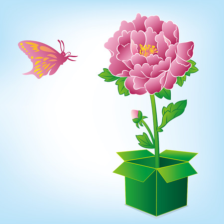 beautiful peony and butterfly Vector