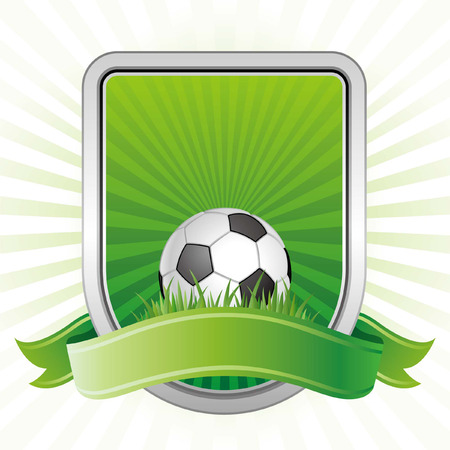 matches: soccer,shield,green background