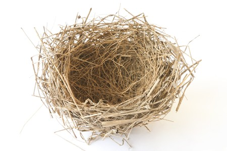 empty nest isolated on white Stock Photo - 8174098