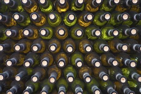 wine bottles arranged in a darkness wine cellar