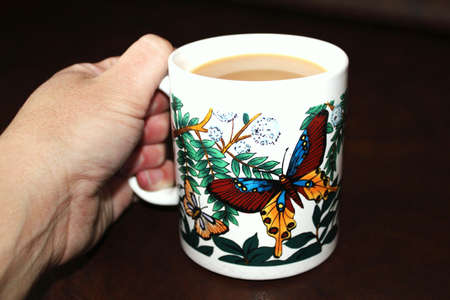 Hand holding hot cup of tea in butterfly mug photo