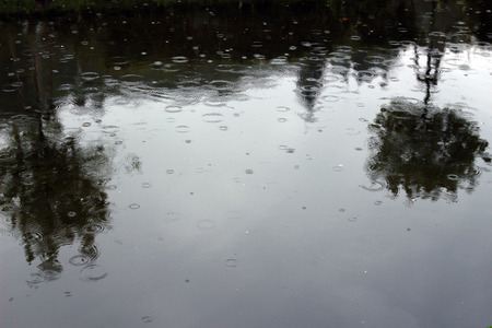 dreary: Raindrops on a water surface