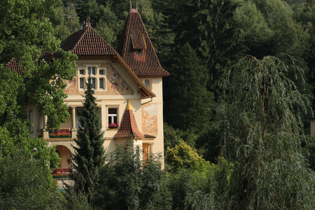 timbering: mysterious villa in the woods