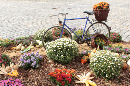 decorated bike: Old bicycle carrying flowers