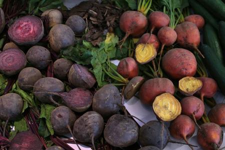 betabel: La cosecha de remolacha