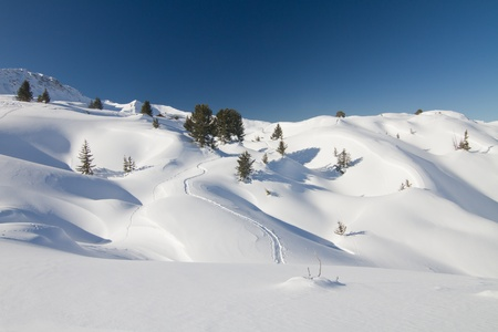 Frech powder snow landscape and tracks