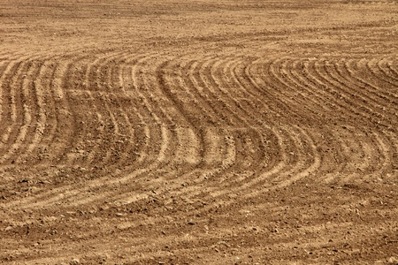 Plowed and cultivated brown field