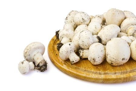 White mushrooms on wooden board, isolated, clipping path included